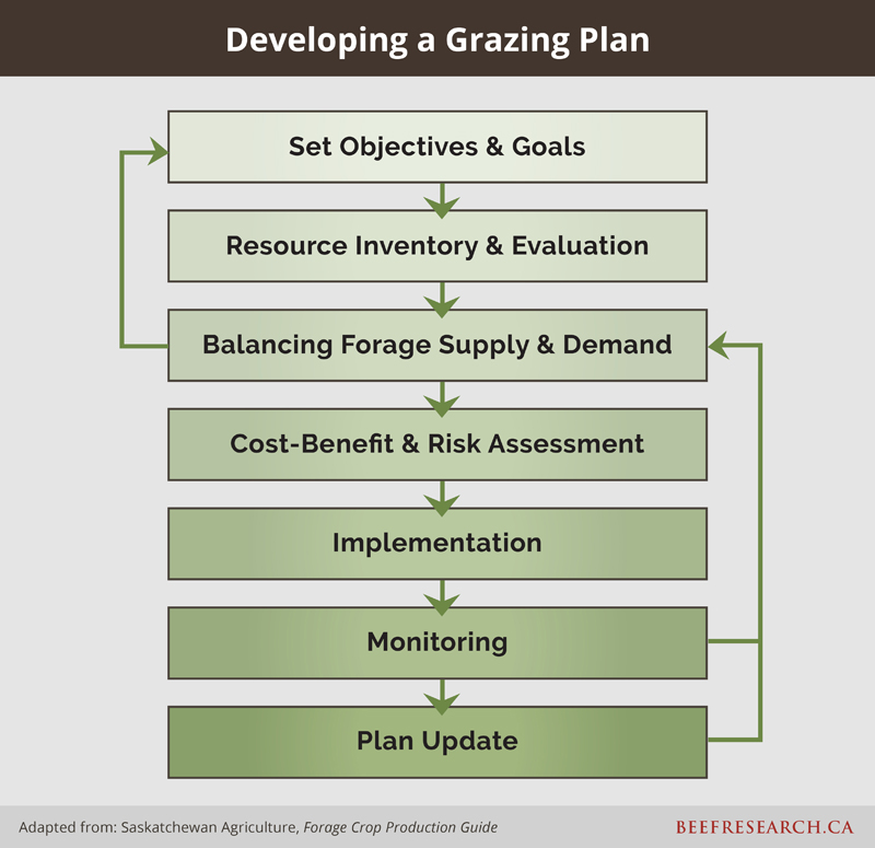 Grazing Management - Beef Cattle Research Council