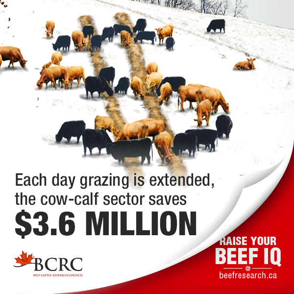 Each day grazing is extended, the cow-calf industry saves $3.6 million