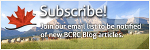 Subscribe to BCRC blog articles
