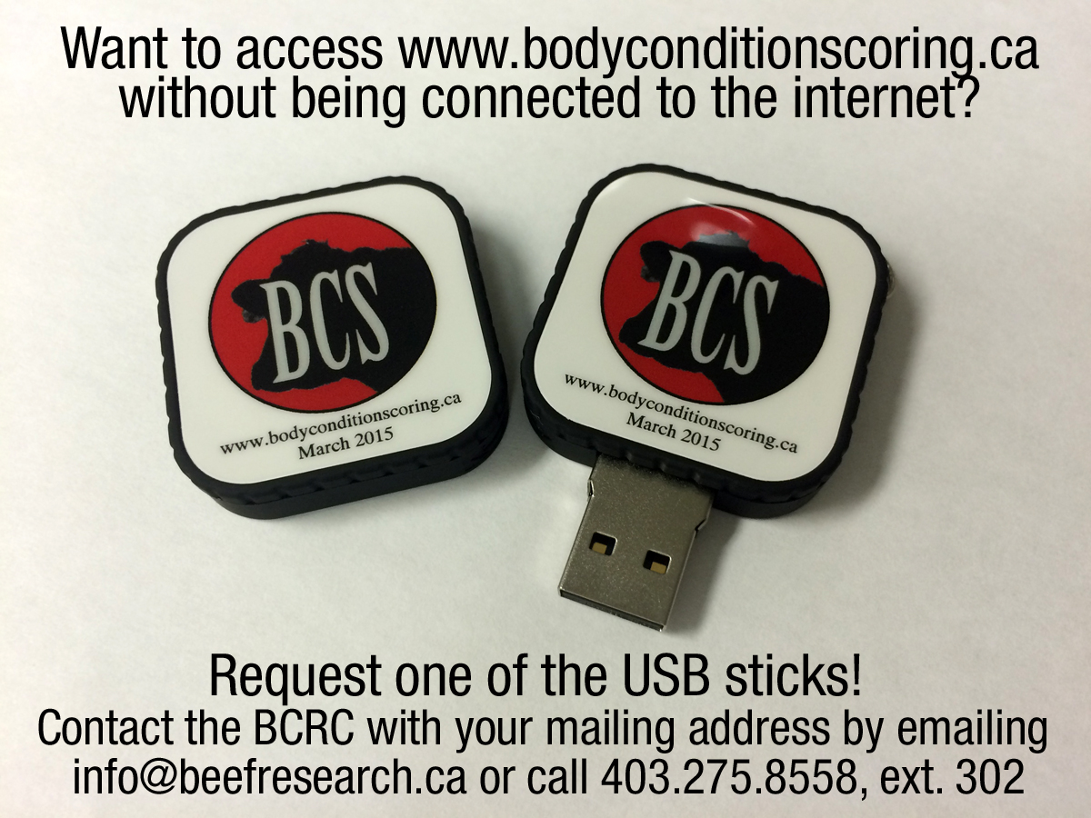Body condition scoring order USB stick
