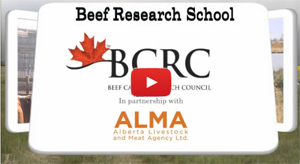 Beef Research School video series