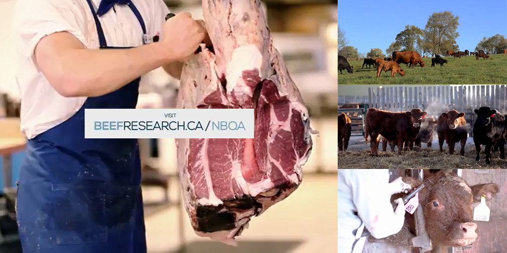 National Beef Quality Audit (NBQA)