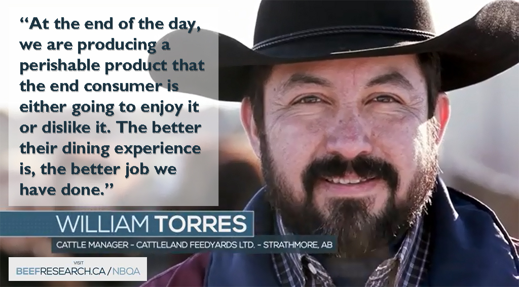 At the end of the day, we are producing a perishable product that the end consumer is going to enjoy or dislike it. The better their dining experience is, the better job we have done. - William Torres, Cattle Manager - Cattleland Feedyards Ltd. - Strathmore, AB