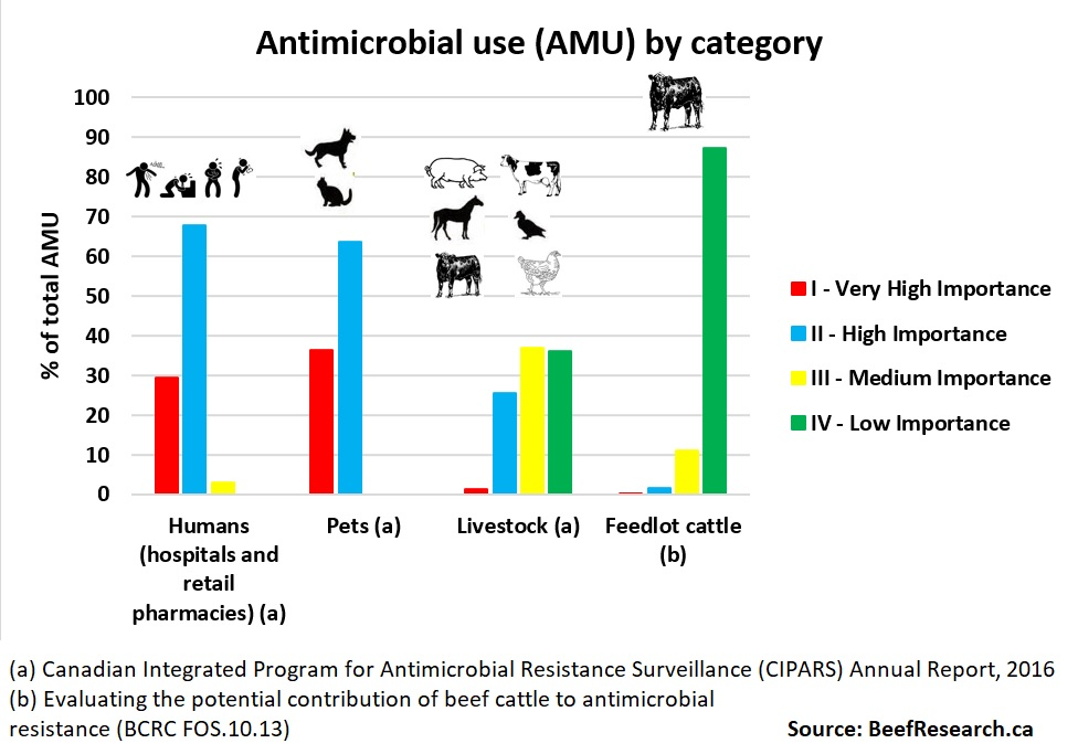 Antimicrobial use humans vs animals vs feedlot cattle