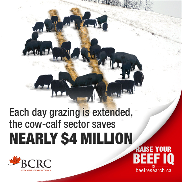 every day grazing is extended saves the cow-calf sector nearly $4 million