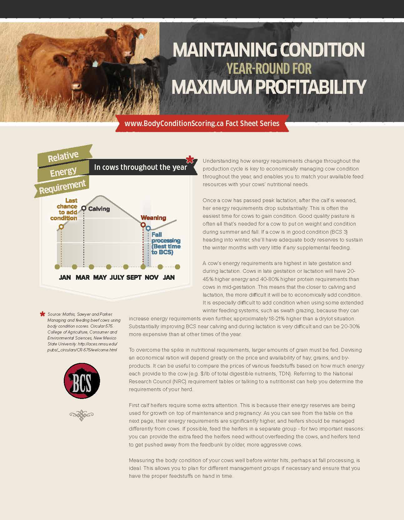 Fact sheet: Maintain Condition Year-Round for Maximum Profitability