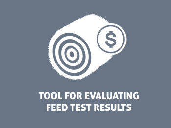 Feed Testing & Analysis for Beef Cattle - Beef Cattle