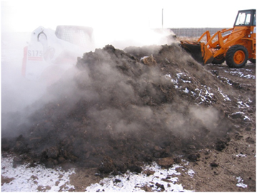 Steam rises as compost is turned in the winter