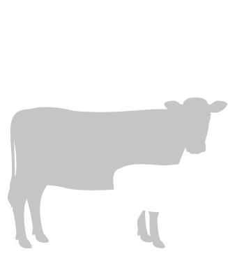 Beef Cattle Research Council - Cow Calf Production Indicators Calculator