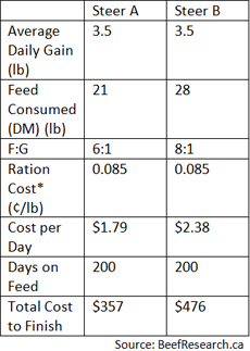 Cattle feed to gain ratio cost example