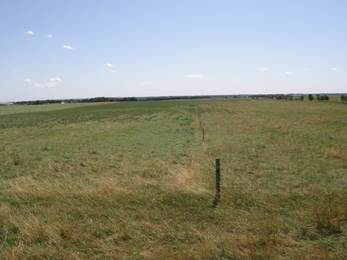Rested/non-rested pasture splits (Photo credit: Hushton Block, Ph.D.)