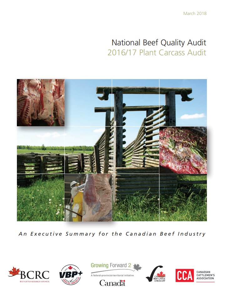 national beef quality audit 2016/17 plant carcass audit results
