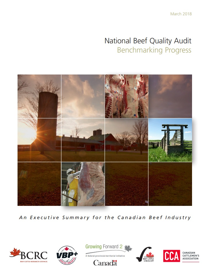 national beef quality audit benchmarking progress