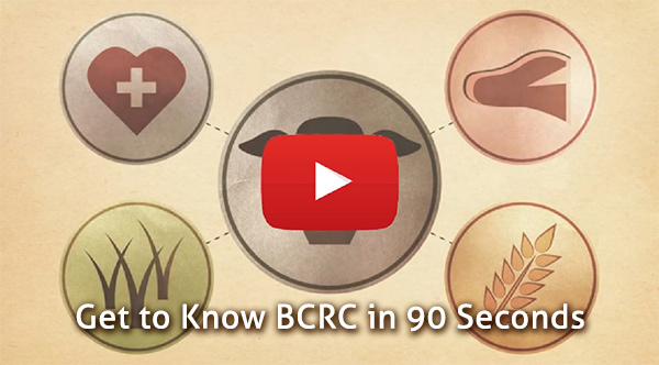 Learn about BCRC