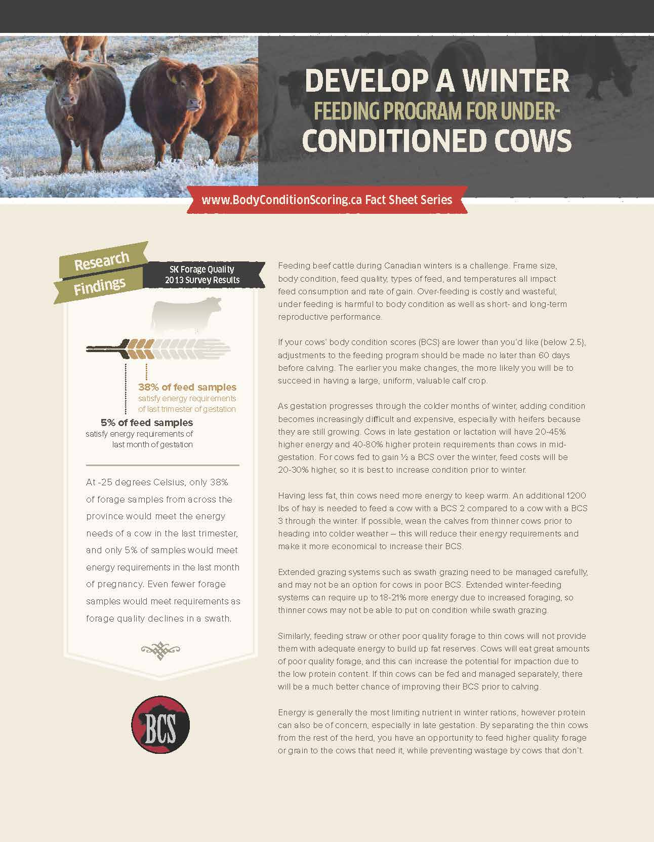 Fact sheet: Develop a Winter Feeding Program for Underconditioned/Thin Cows